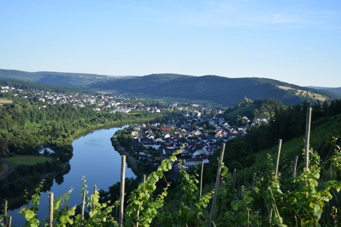 Ausblick auf Saarburg